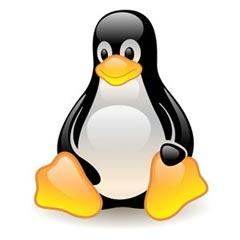 Linux medical billing software